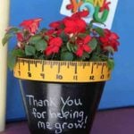 Chalkboard-Potted-Plant