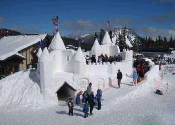 Amazing Snow Forts