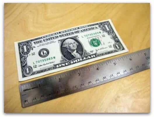 6-inch_dollar_bill