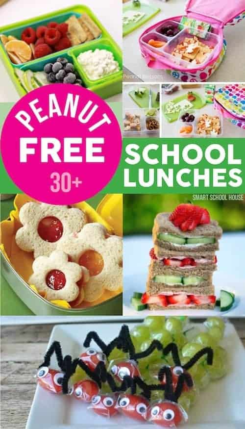 Peanut Free School Lunches Ideas