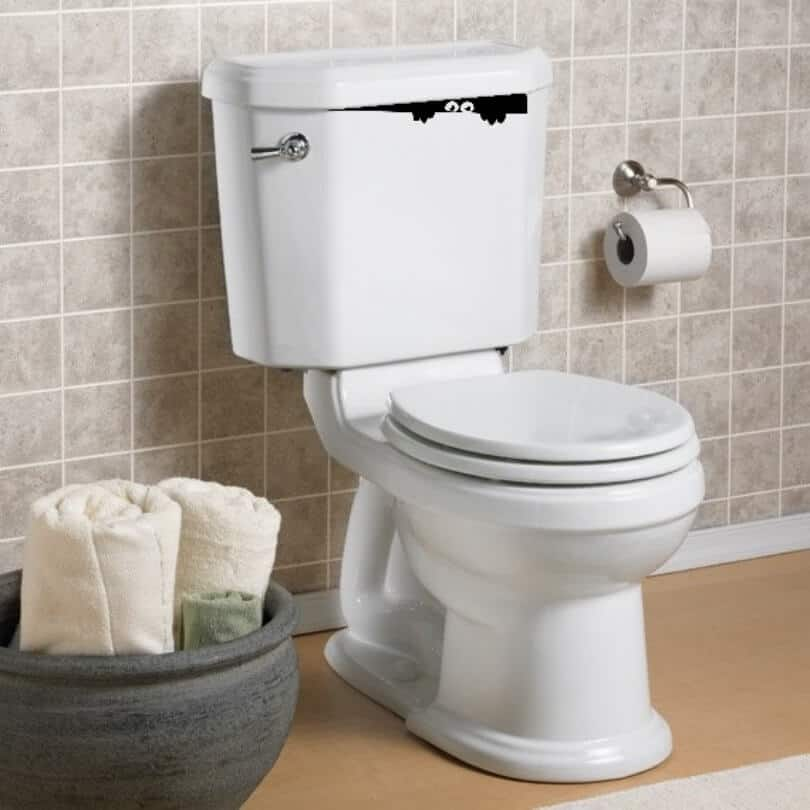 whats in my toilet