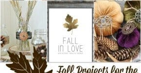 Fall Projects for the Home by Princess Pinky Girl