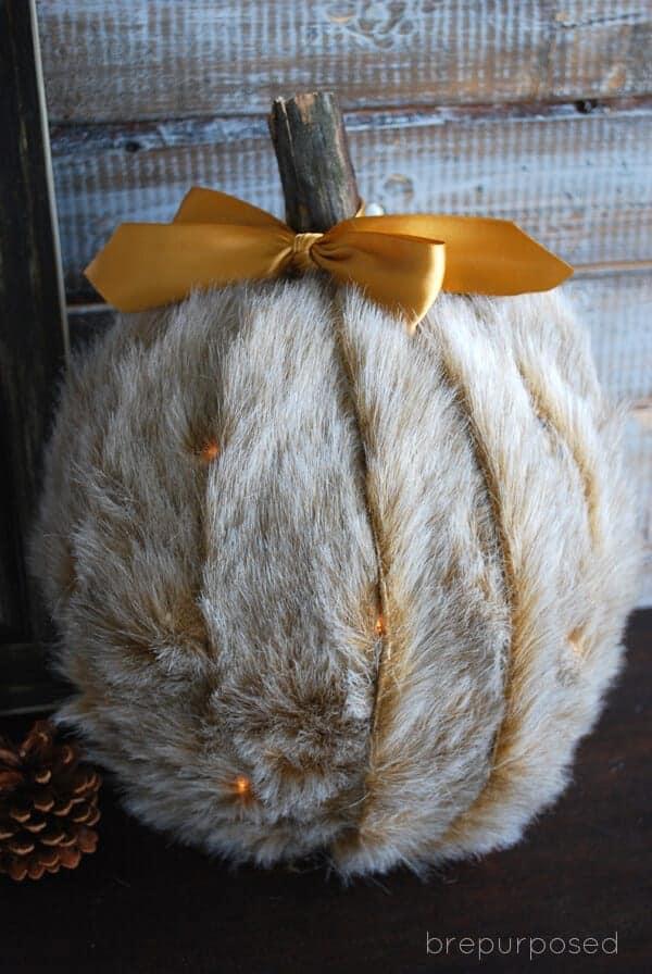 Fur Pumpkin by B Repurposed