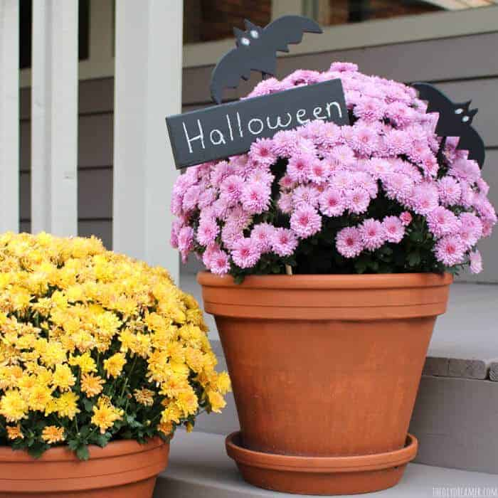 Halloween Planter by the DiY Dreamer
