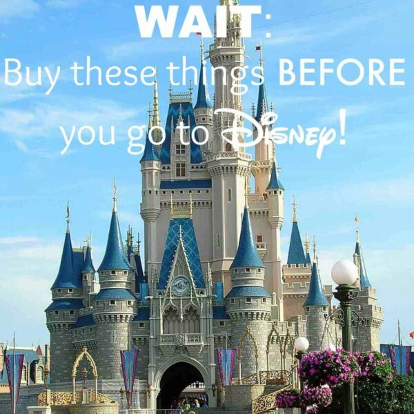 Things to Buy BEFORE you go to Disney & Great Disney Tips