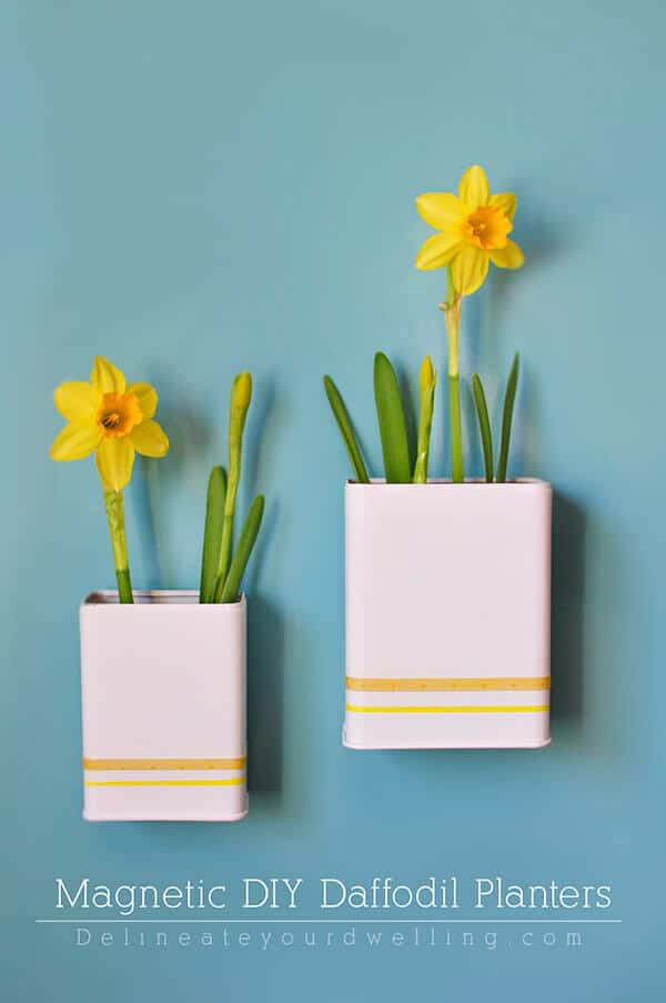 Magnetic Daffodil Planters by Delineate Your Dwelling
