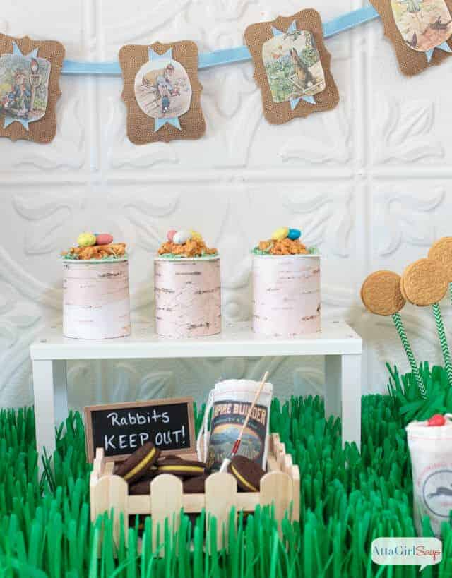 Peter Rabbit Party by Atta Girl Says