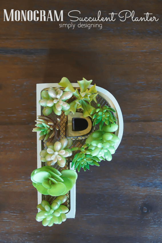 Monogram Succulent Planter by Simply Designing
