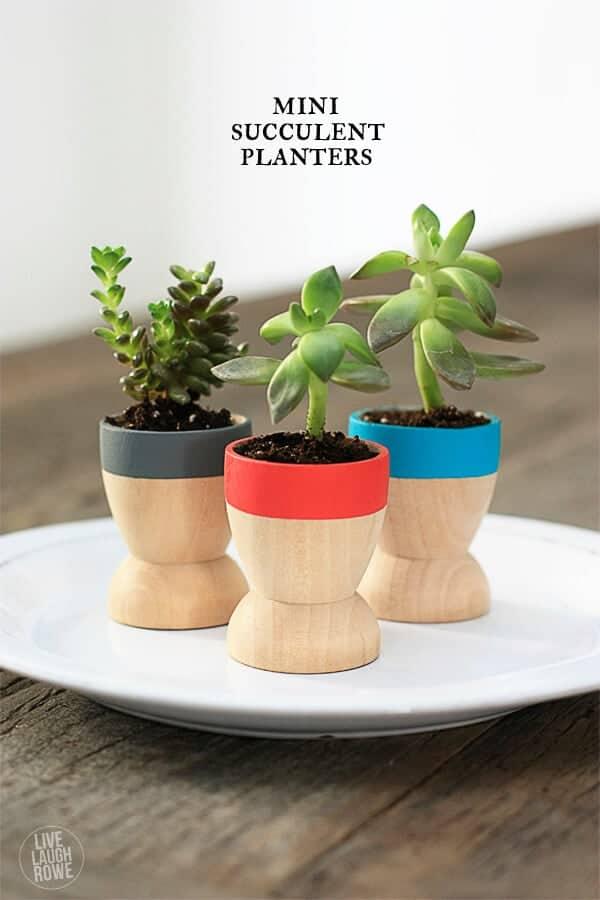 mini succulent planters by live laugh rowe