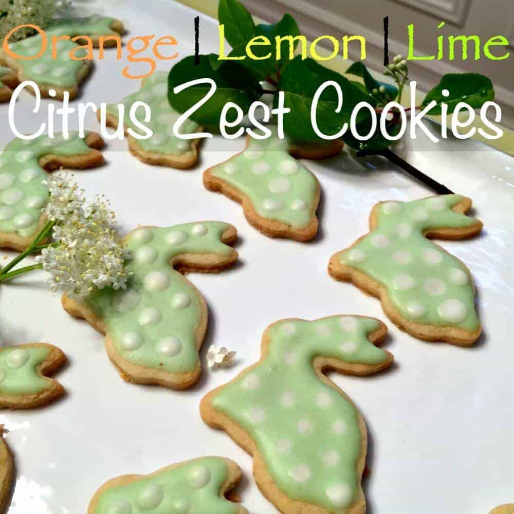 zest cookies square
