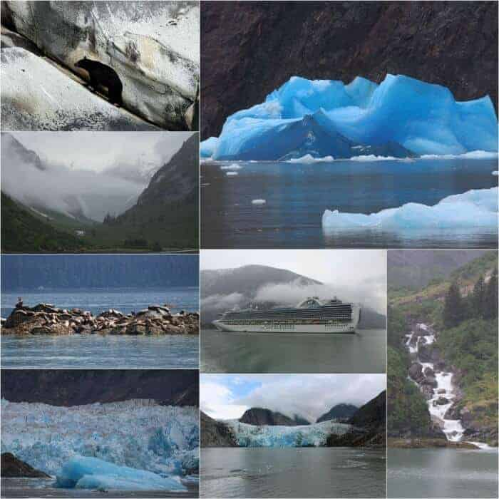 What to do in Tracy Arm Fjord