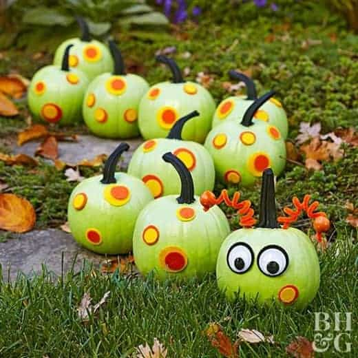 Caterpillar No Carve Pumpkin from Better Homes and Gardens and other great no carve pumpkins