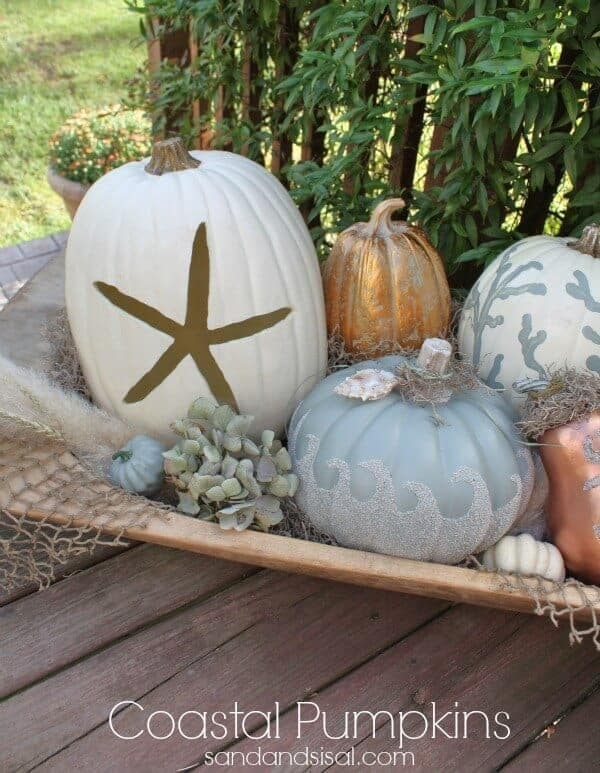 Coastal Pumpkins by Sand and Sisal