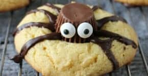 spider cookie square
