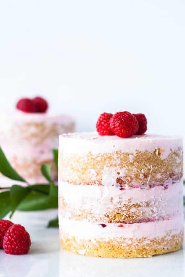 Pink Raspberry Vanilla Mini Cakes