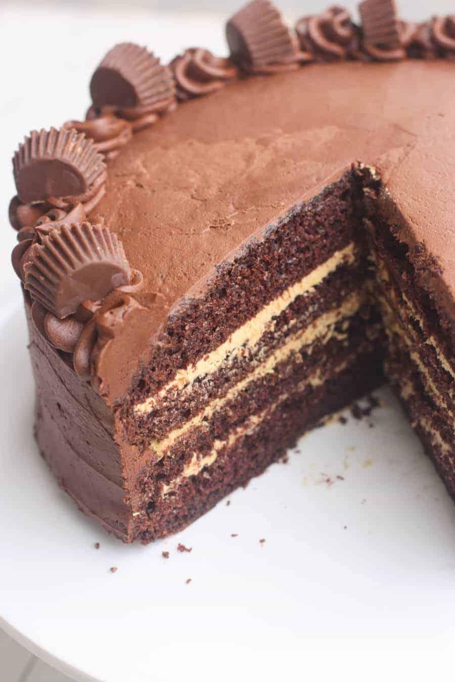 Chocolate_Peanut_Butter_Cake-2