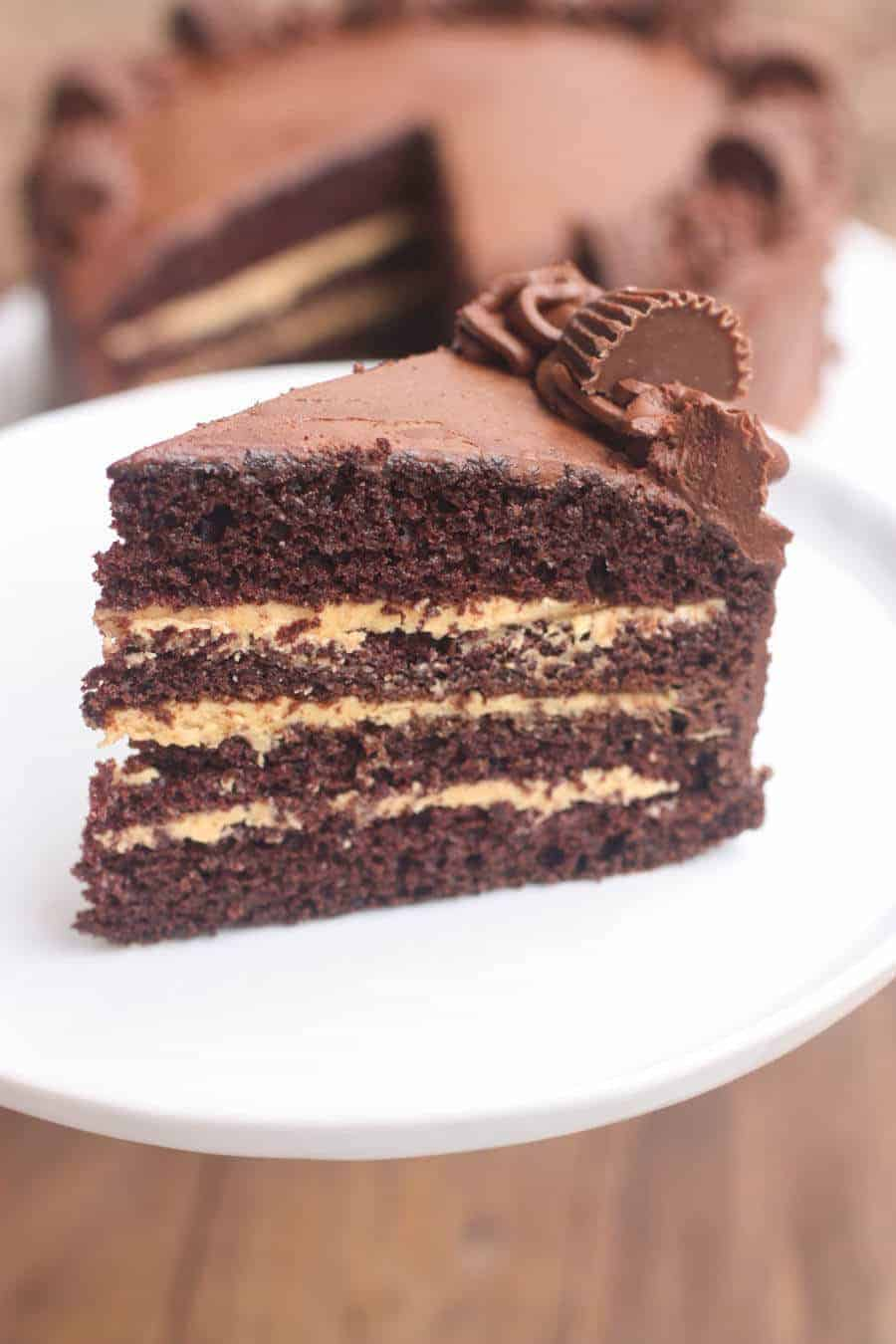 Chocolate_Peanut_Butter_Cake-3