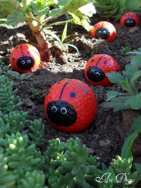 Painted Golf Ball Ladybugs by Artdrops