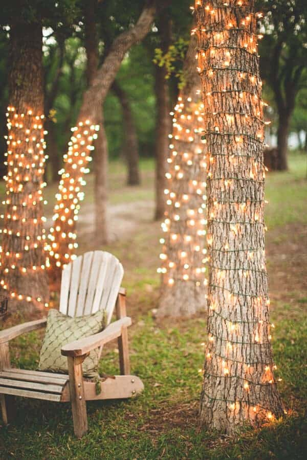 Tree Lights | Ruffled Blog