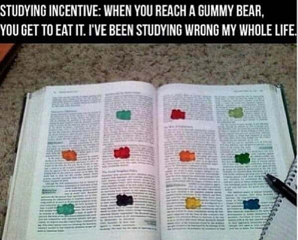 Use gummy bears as study incentive