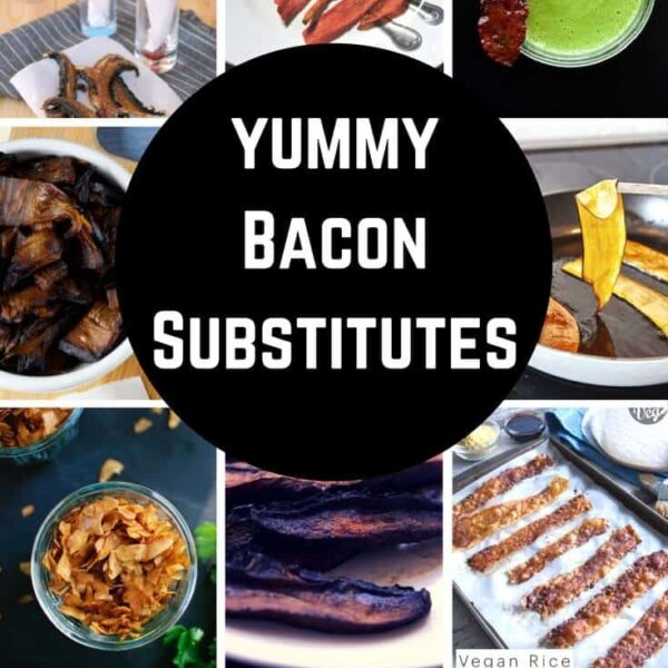 Yummy Bacon Recipes