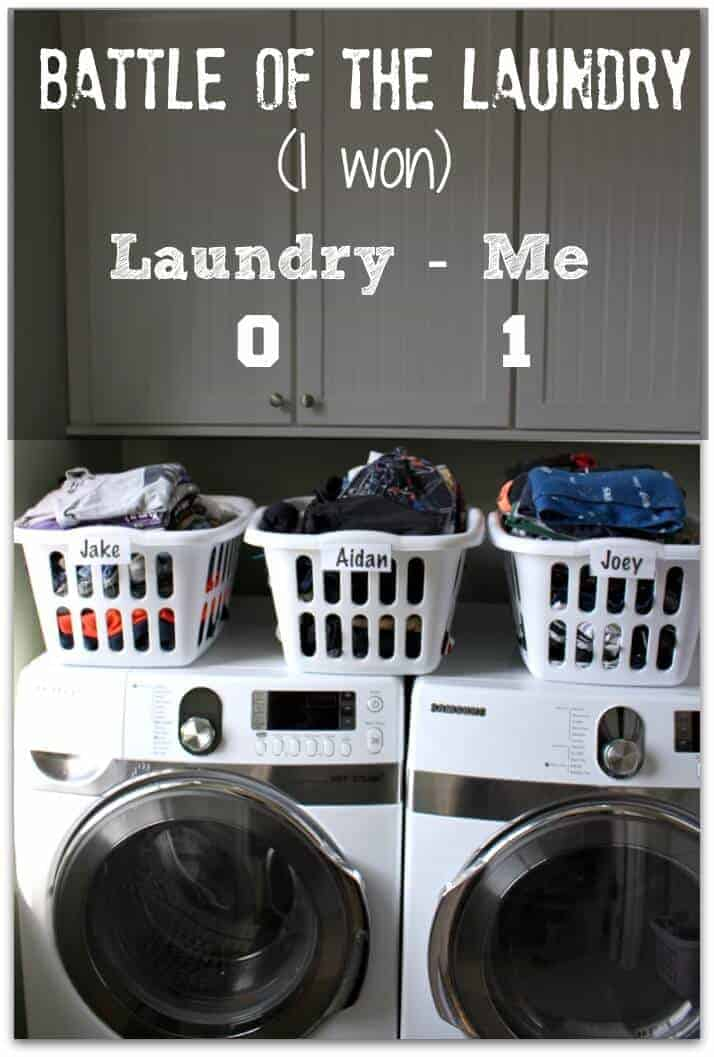 How to Win the Laundry War by Princess Pinky Girl