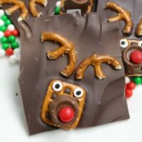 Rudolph the Red Nosed Reindeer Bark