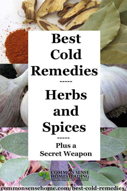 Best Cold and Flu Remedies with Herbs and Spices by Common Sense Home | Cold and Flu Hacks for Winter