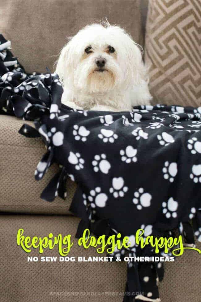 No Sew Dog Blanket by Spaceships and Laserbeams | Homemade Dog Treats and DIY Projects for Dogs