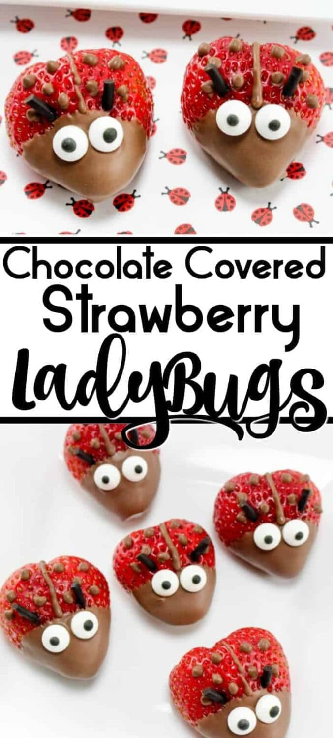 Chocolate Covered Strawberry Ladybugs