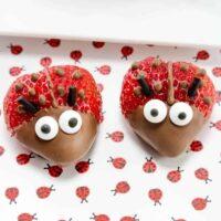 Chocolate Strawberry Ladybugs Featured Image