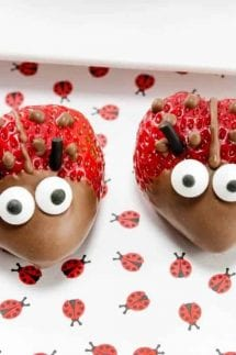 Chocolate Strawberry Ladybugs Featured Image