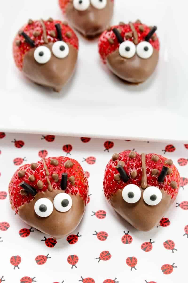 Chocolate Strawberry ladybugs