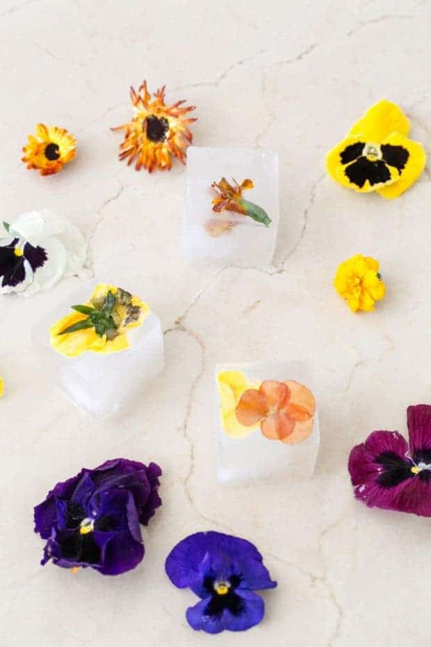 Make floral ice for a beautiful cocktail from Sugar and Charm and other amazing ice cube tray hacks