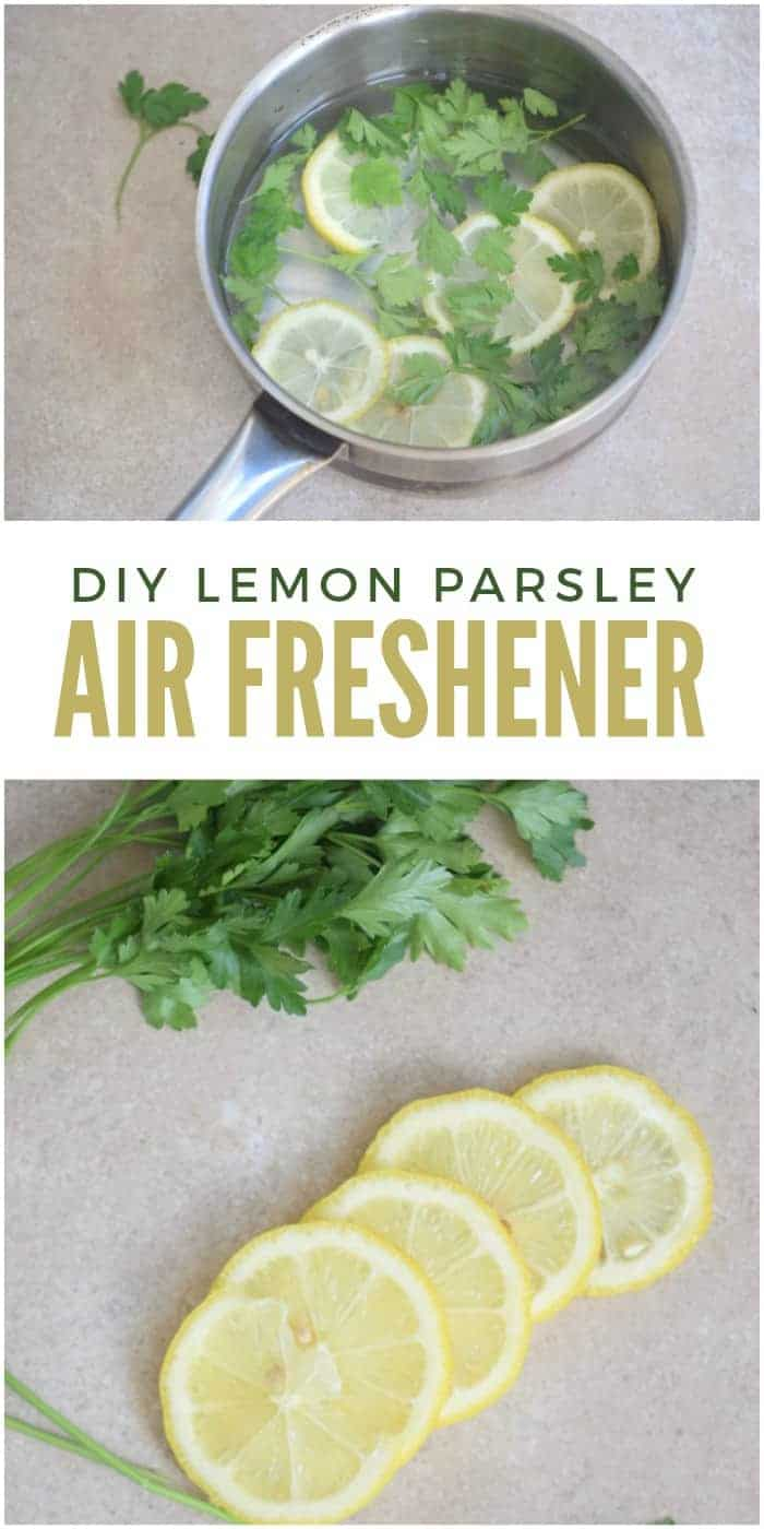 DIY Lemon Parsley Air Freshener to Get Rid of Kitchen Smells by One Crazy House | Smell Hacks to Have Your Home Smelling Amazing