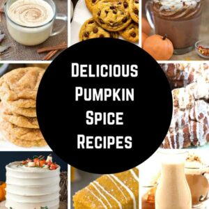Best Pumpkin Spice Recipes (and everything nice)