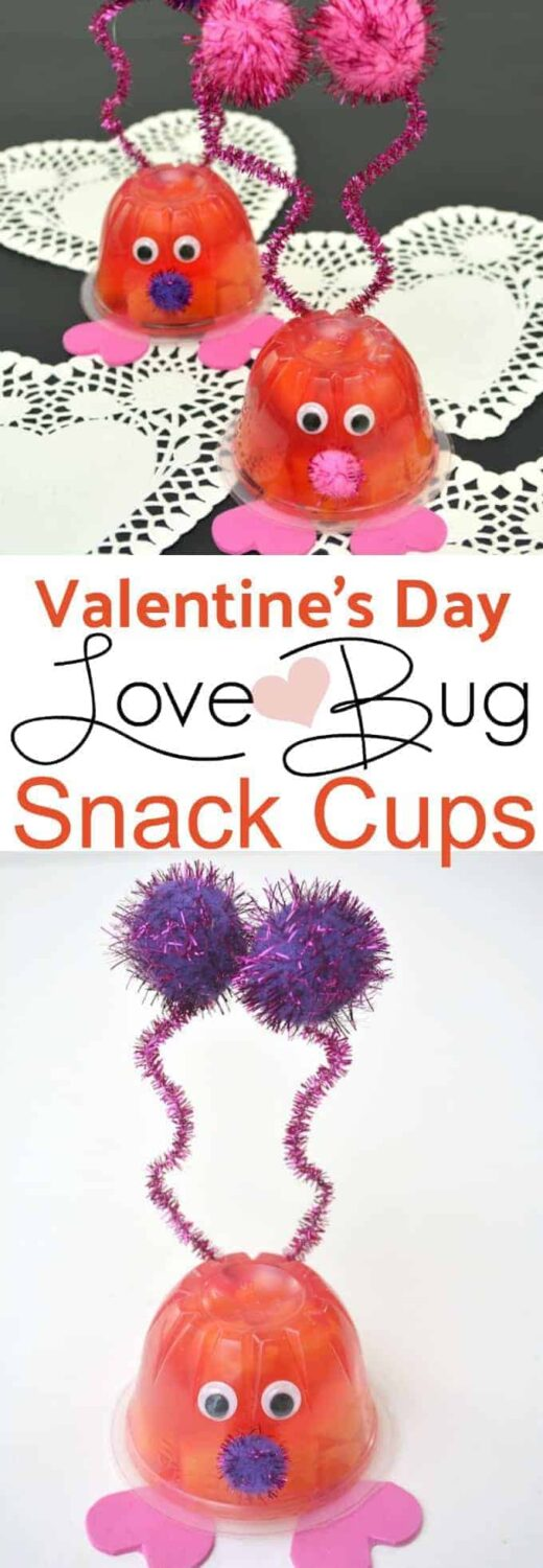 Valentine's Day Love Bug Snack Cups