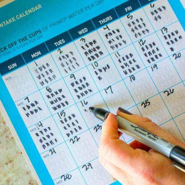 Primo Water intake calendar printable square