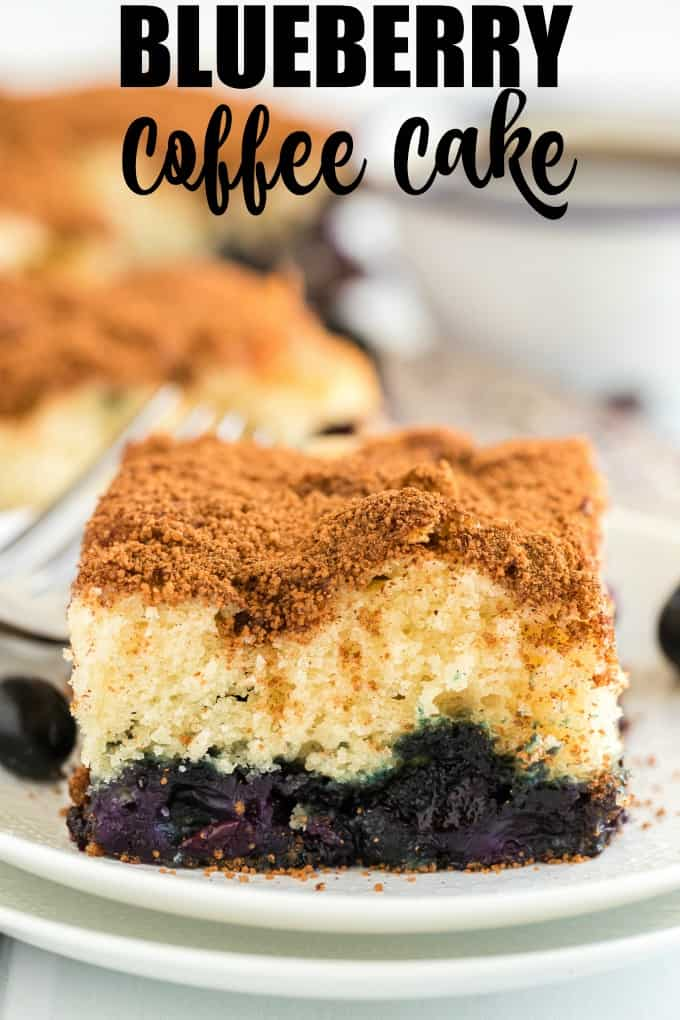 Blueberry Coffee Cake on a white plate