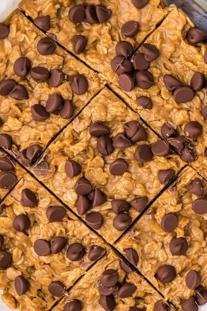 close up of oatmeal bars with chocolate chips on top cut into squares