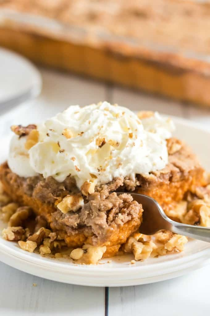 Pumpkin Dump Cake on a white plate with whipped cream and nuts
