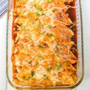 Chicken Enchiladas featured image