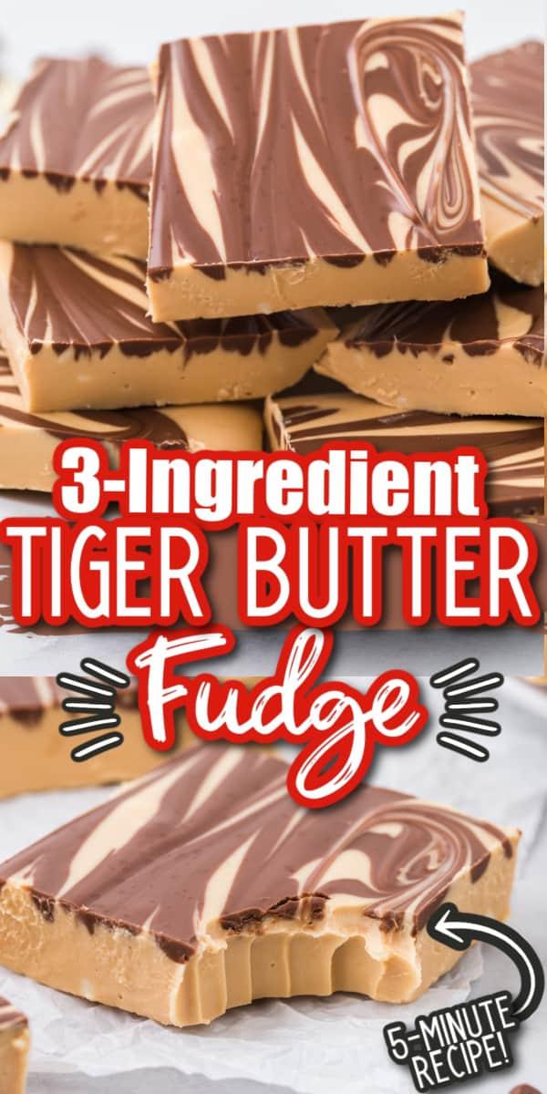 Tiger Butter Fudge Pinterest