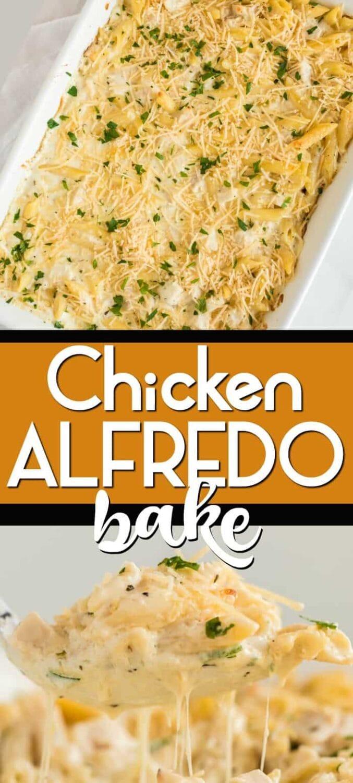 chicken alfredo bake long pin