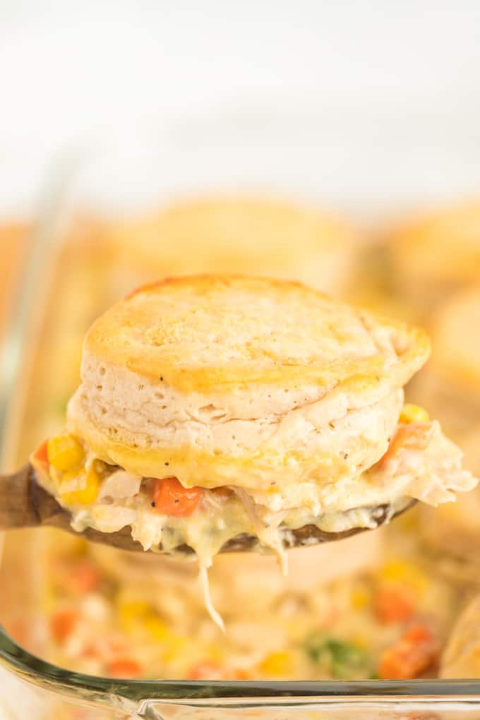 chicken pot pie on a spatula