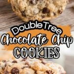 DoubleTree Chocolate Chip Cookies Pinterest