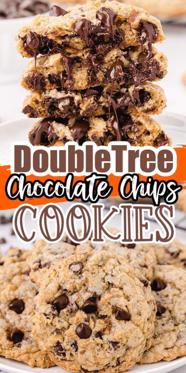 Copycat DoubleTree Chocolate Chip Cookies Pinterest