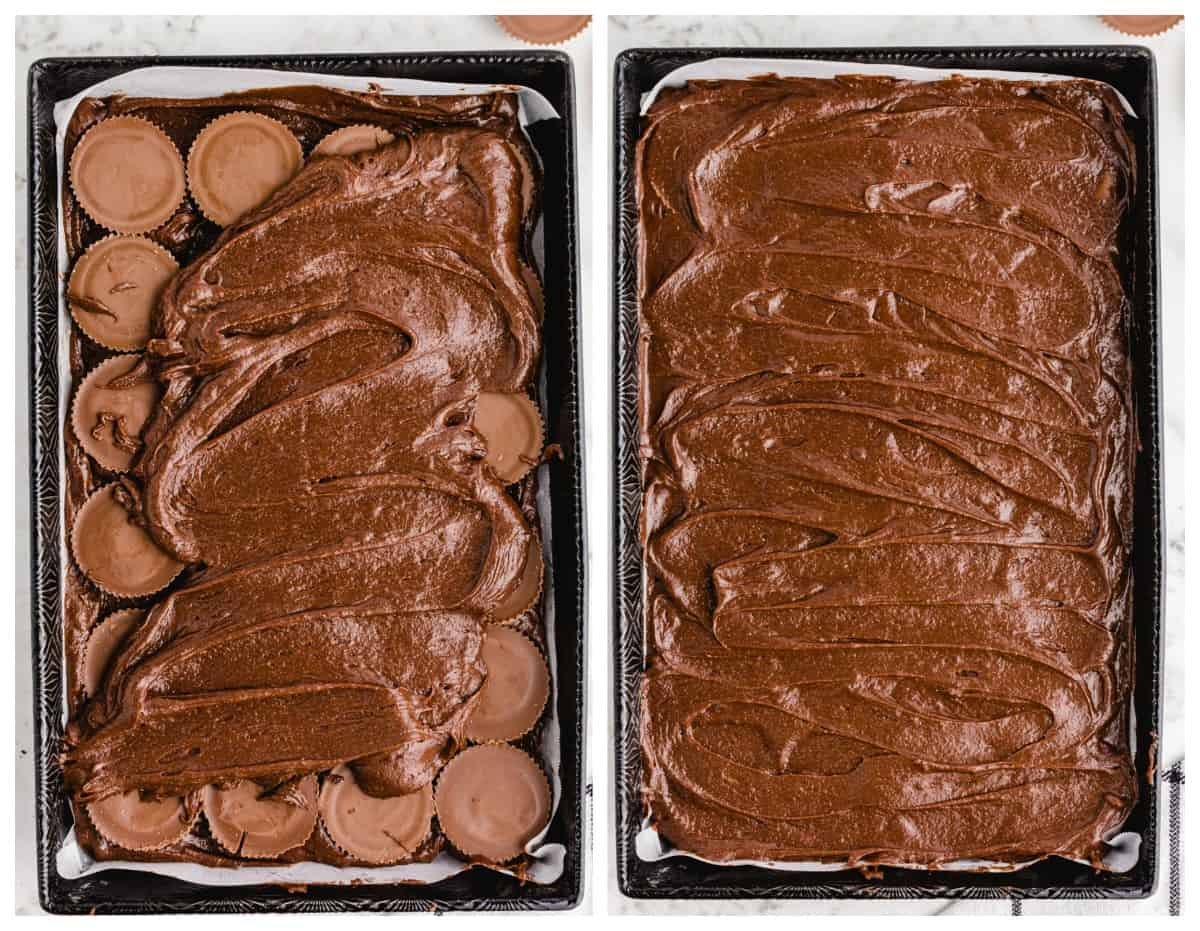 spread brownie mix on top of peanut butter cups