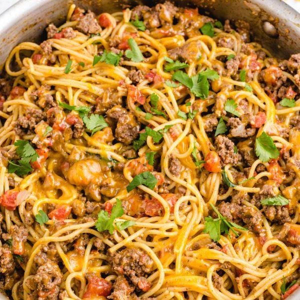taco spaghetti - Google Web Story Template