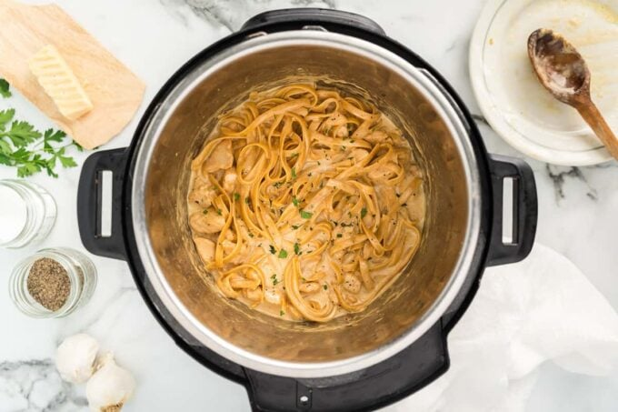 chicken and noodle in the instant pot
